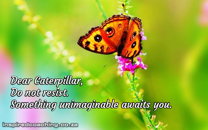 Caterpillar, do no resist. Something unimaginable awaits you.